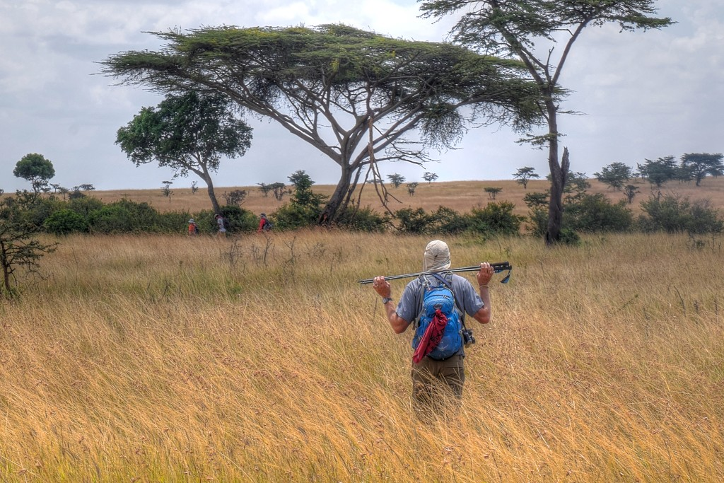 Jeff James walking through the savana